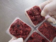 画像4: エゾ鹿肉 ミンチ 250g (冷凍)  (4)